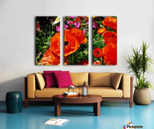 Garden with Orange Flowers Growing Split Canvas print