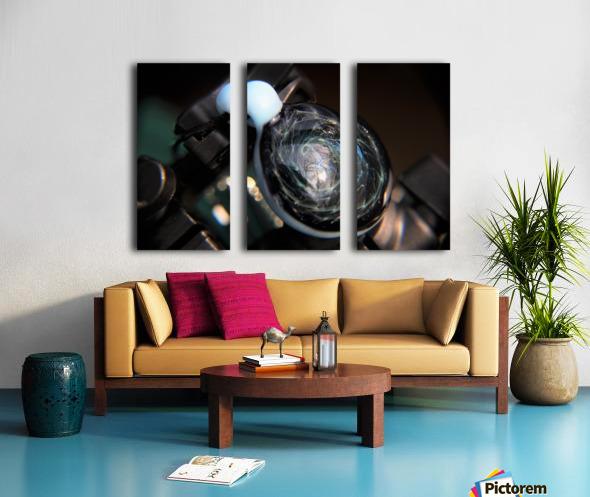 ReflectionInGlassF001 Split Canvas print