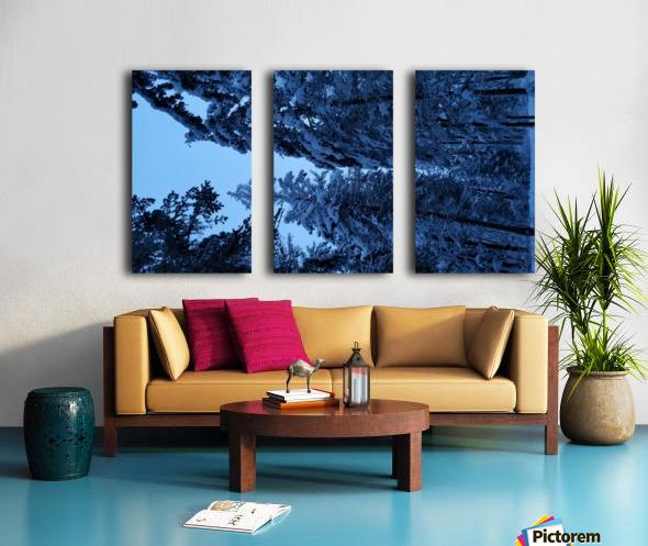 Twilight Woods Split Canvas print