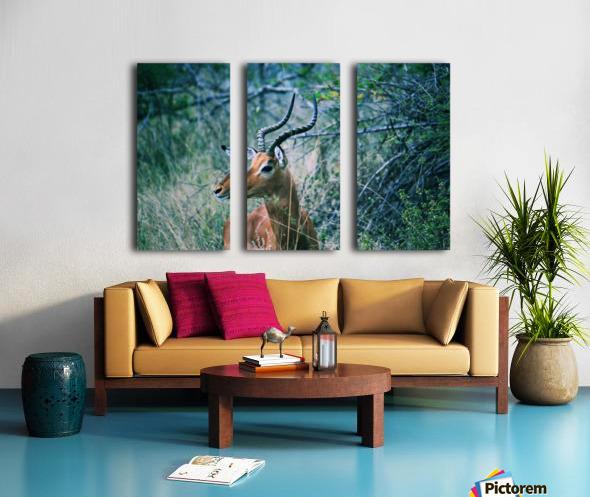 African Game Split Canvas print