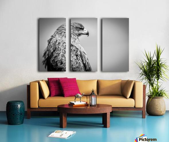 EAGLE EYE Split Canvas print