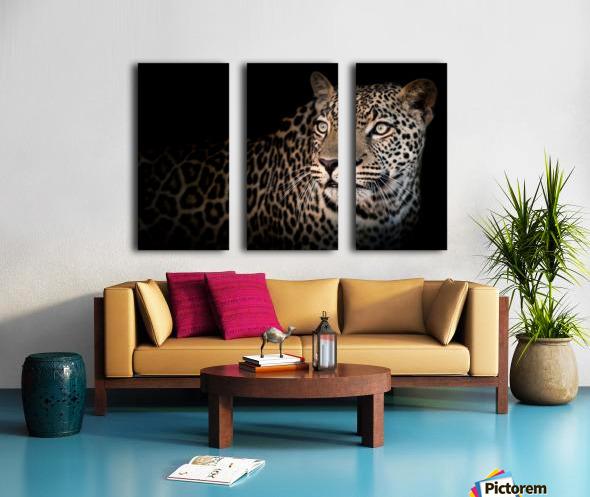 ELUSIVE Split Canvas print