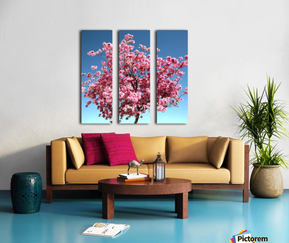 Cherry Blossom on Blue Split Canvas print