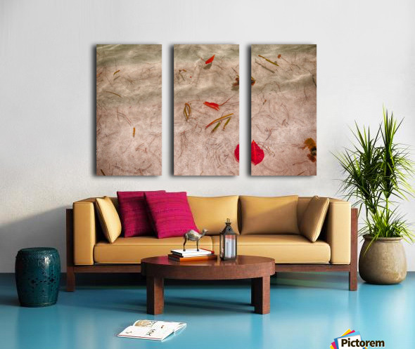 Petal Split Canvas print