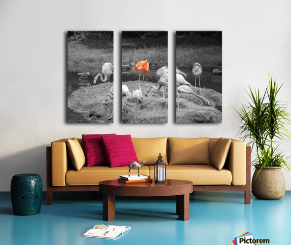 Stand Out Split Canvas print