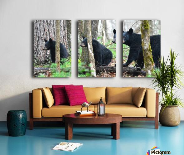 233-Perfect Profiles Split Canvas print