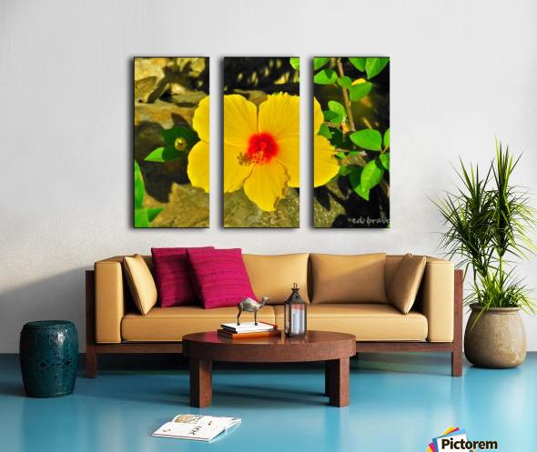 yellow & red Split Canvas print