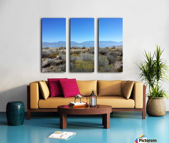 Salt Lake Vista Split Canvas print