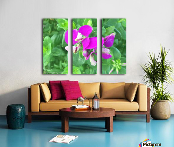 Purple Split Canvas print