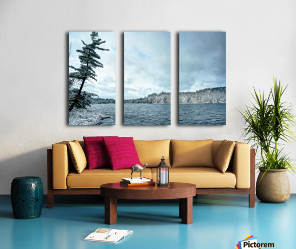 Frimas Split Canvas print