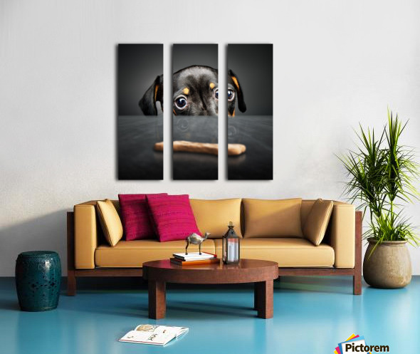 Puppy longing for a treat Split Canvas print