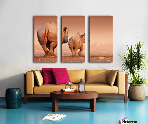 Black Rhinoceros calf and cow walking away Split Canvas print