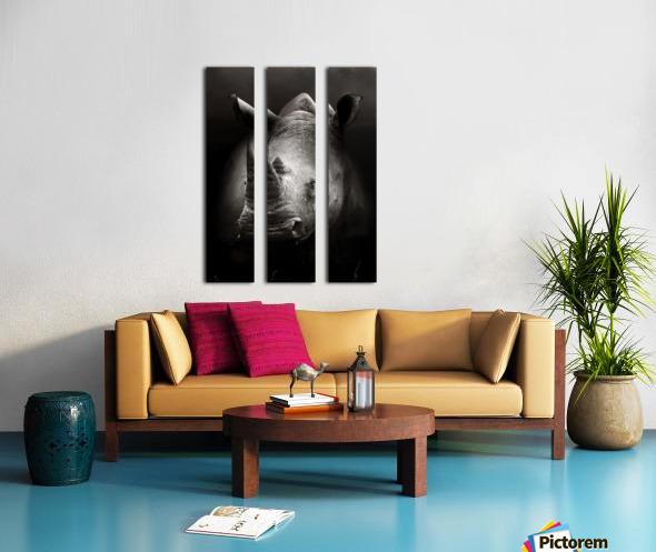 Rhinoceros portrait Split Canvas print