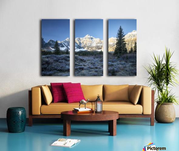 Frosty morning  Split Canvas print