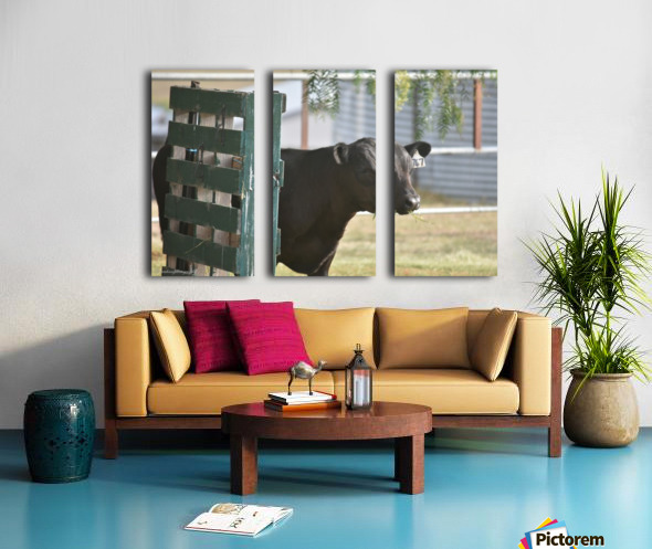 Pallet Split Canvas print