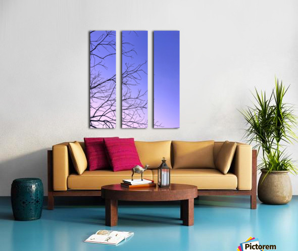 Rooted Split Canvas print