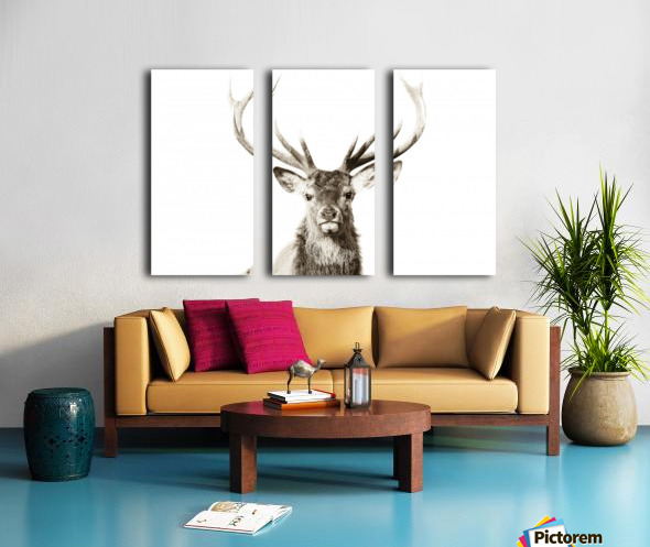 Cerf rouge Split Canvas print