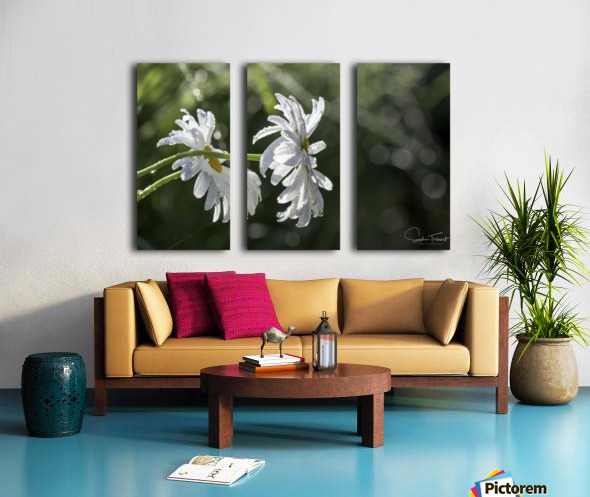 Soeurs jumelles Split Canvas print