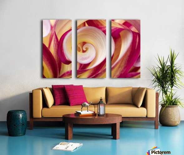 Spirales Split Canvas print
