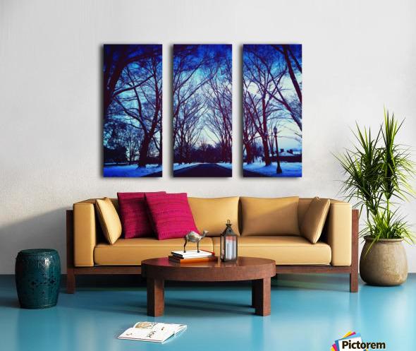 Snowy Delight Split Canvas print