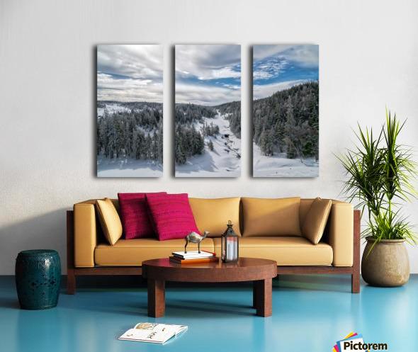 A Boreal Winter Split Canvas print