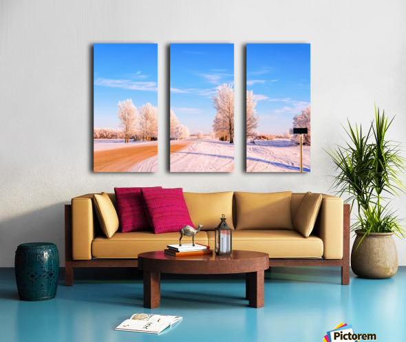 Beautiful, colorful and cold winter with snow and frost Split Canvas print