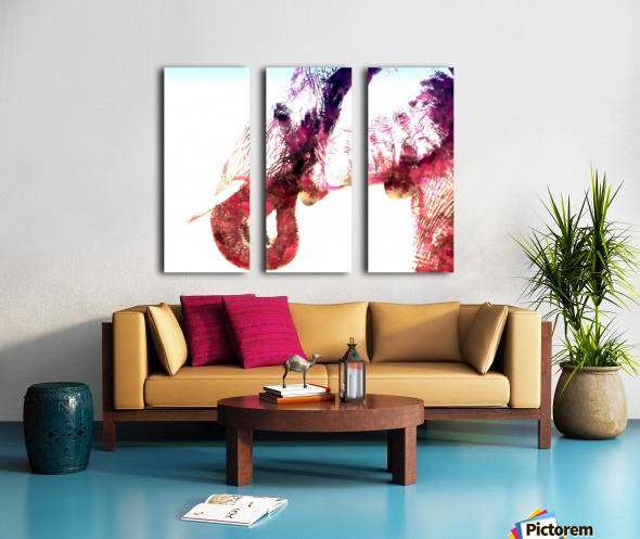 elephant 2 Split Canvas print
