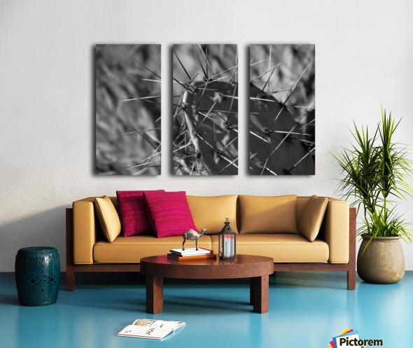 Prickly Pear Split Canvas print