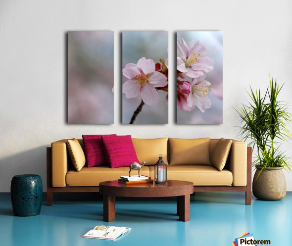 Pastels Split Canvas print