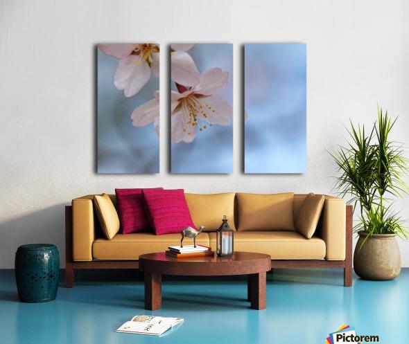 Spring Pastels Split Canvas print