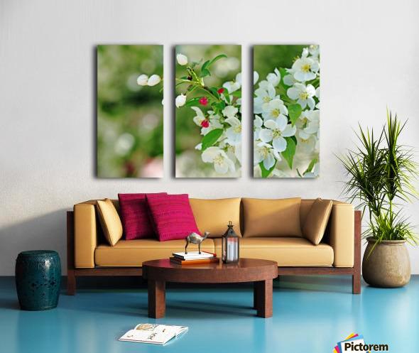 Crabapple Blossoms Split Canvas print