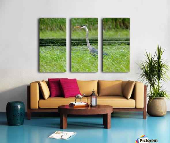 Great Blue Heron Split Canvas print