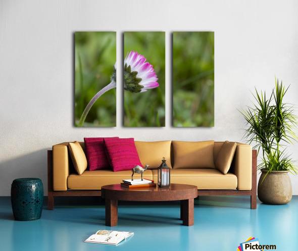 Spring flower Split Canvas print