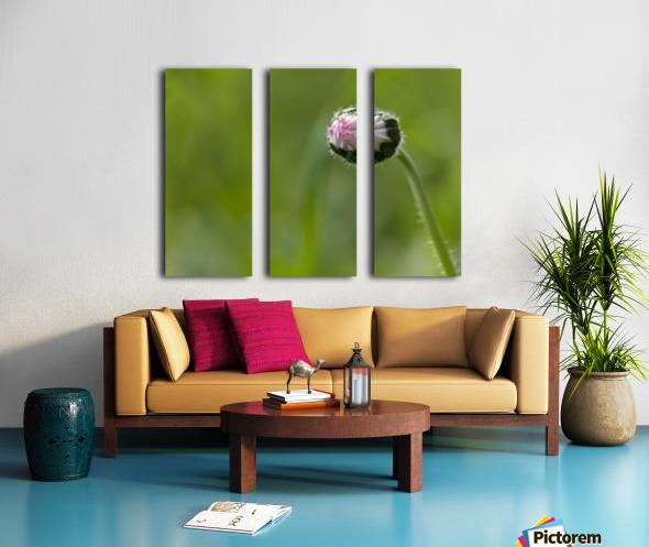 Flower bud Split Canvas print