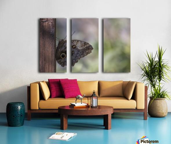 Owl butterfly Split Canvas print