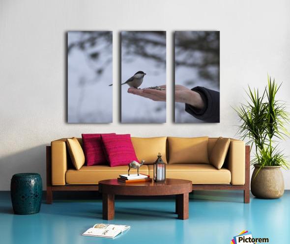 A bird on the hand Split Canvas print
