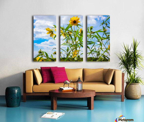 Sunny flower Split Canvas print