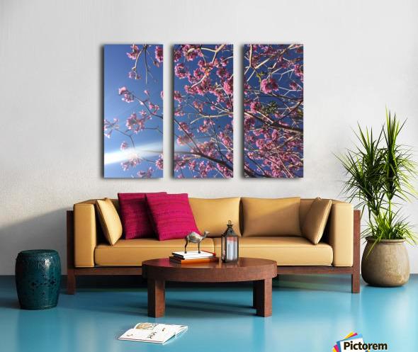 Anime cherry blossom xx Split Canvas print