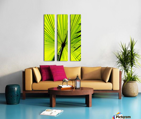 IMG_5170 copyaa Split Canvas print