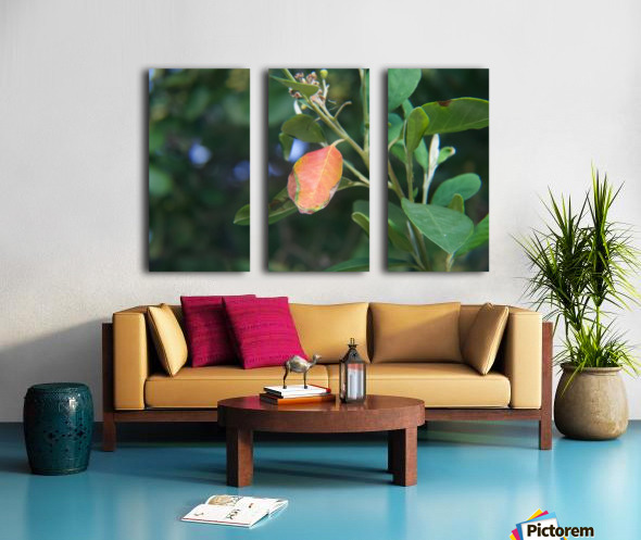 Leaves no.2 Split Canvas print