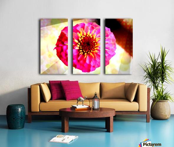 Rainbow daisy Split Canvas print