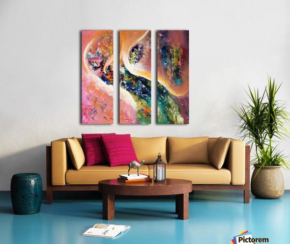 IMG_0203 Split Canvas print