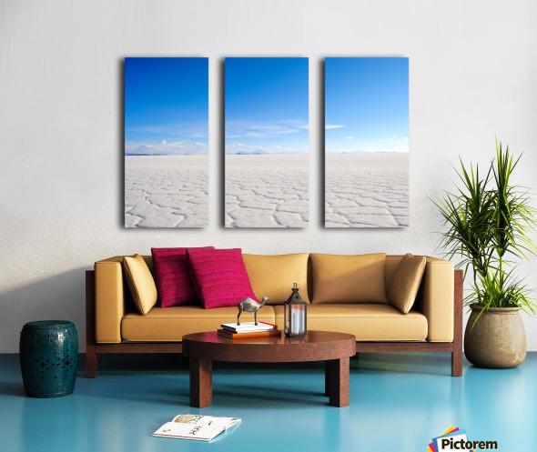 Salt Bae Split Canvas print