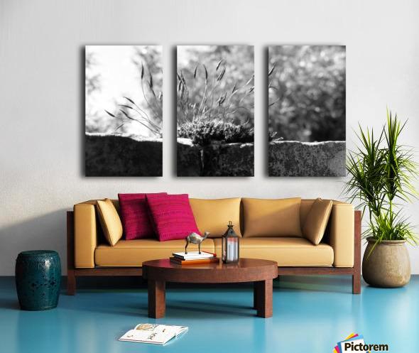inspiration Split Canvas print