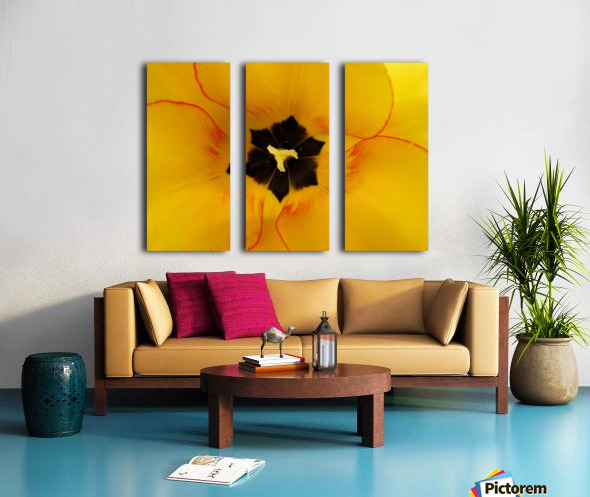 DSC00675 Split Canvas print