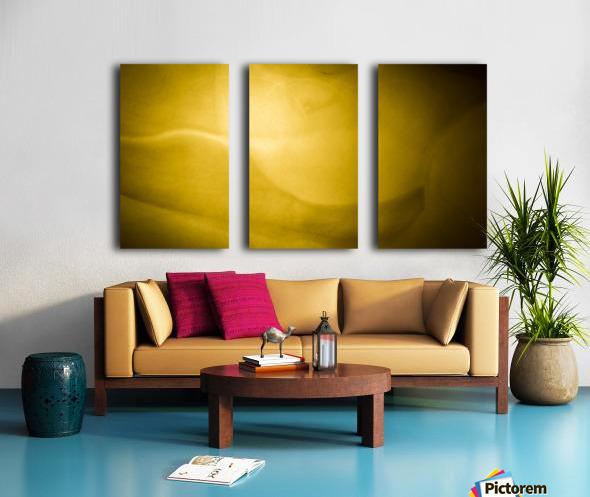 Creation Split Canvas print