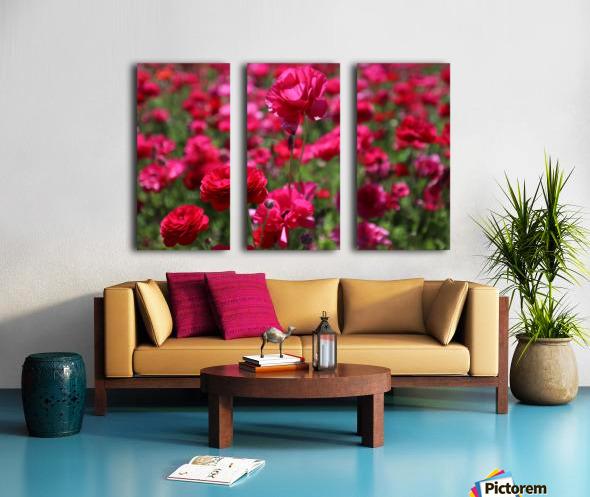 Never-ending Roses  Split Canvas print