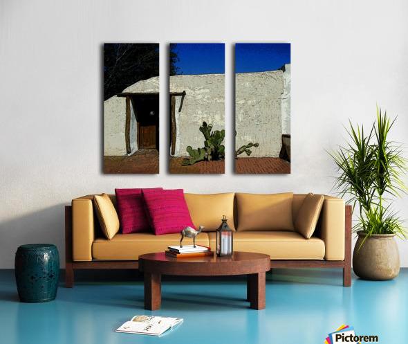 Cactus & Door Split Canvas print