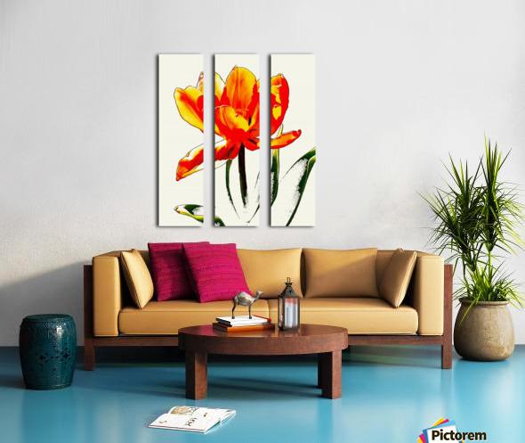 Poppy 3 Split Canvas print