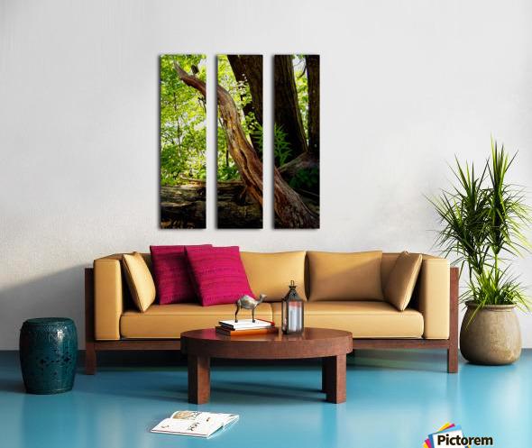 Wooden I   copy Split Canvas print